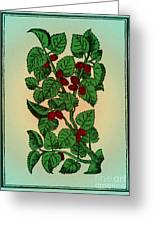 Red Mulberry Greeting Card