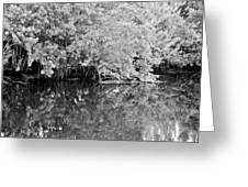 Reflections On The North Fork River In Black And White Greeting Card