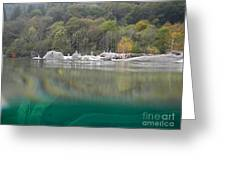 River With Trees Greeting Card