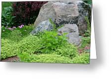 Rock Garden Greeting Card