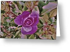 Rose Abstract Greeting Card