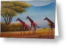 Running Zebras Greeting Card
