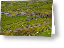 Rural Landscape On Dingle Peninsula Greeting Card
