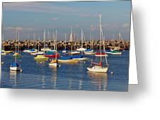 Sail Siesta Greeting Card by Joann Vitali