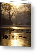 Saint Stephens Green, Dublin, Co Greeting Card