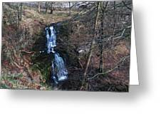 Scaleber Force Greeting Card