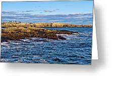 Schoodic Point Acadia National Park Greeting Card