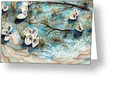 Shell Shadows Greeting Card