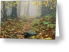 Shenandoah National Park In Virginia Greeting Card