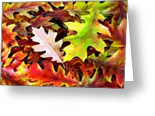 Simple Background From Autumn Leaves Greeting Card