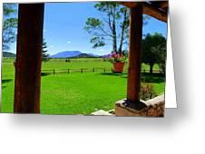 Sipe Wildlife Center Greeting Card