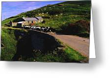 Slea Head, Dingle Peninsula, Co Kerry Greeting Card