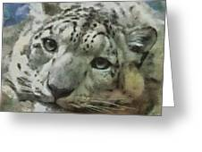 Snow Leopard Painterly Greeting Card
