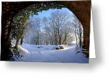 Snow Through The Bridge Greeting Card