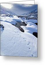 Snowy Landscape, Scotland Greeting Card