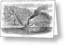 South: Cotton, 1861 Greeting Card