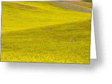 Spring In Spain Greeting Card