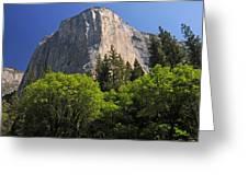 Spring Views Of El Capitan Greeting Card