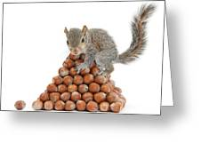 Squirrel And Nut Pyramid Greeting Card