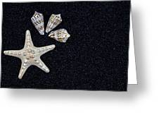 Starfish On Black Sand Greeting Card by Joana Kruse
