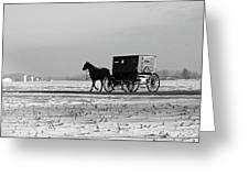 Stark Winter Buggy Greeting Card