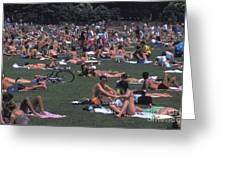 Summer In Central Park Greeting Card