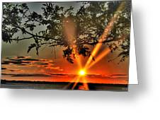 Summers Breeze Sunsets Through Tress Greeting Card