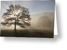 Sunrise In Cades Cove Greeting Card