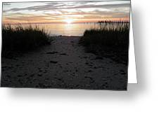Sunset Through The Grass Cape Charles Virginia Greeting Card