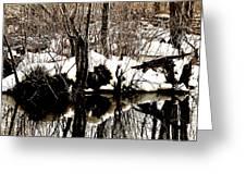 Swamp Greeting Card