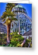 Tacoma Botanical Conservatory Greeting Card