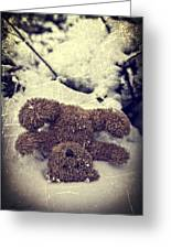 Teddy In Snow Greeting Card