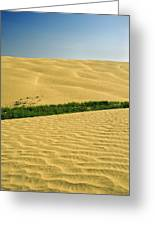 The Great Sandhills, Near Sceptre Greeting Card