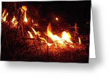 Tiny Flame Two Greeting Card