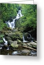 Torc Waterfall, Killarney National Greeting Card