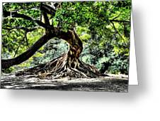 Tree Of Life Greeting Card by Kenneth Mucke