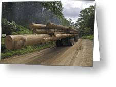 Truck With Timber From A Logging Area Greeting Card