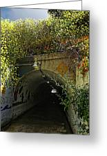 Tunnel At Crystal Cove Greeting Card