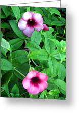 Twin Wild Flowers Greeting Card
