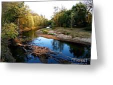 Twisted Creek Greeting Card