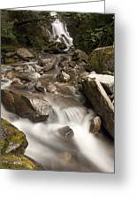 Unnamed Waterfall Along South Tongass Greeting Card
