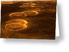 Venus, Synthetic Aperture Radar Map Greeting Card by Detlev Van Ravenswaay