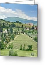 Vineyards On A Hillside Greeting Card