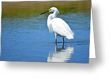 Wading In Silence Greeting Card