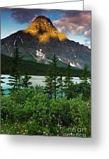 Waterfowl Lake Greeting Card