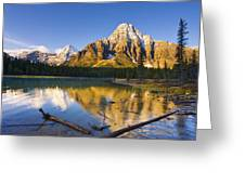 Waterfowl Lakes And Mount Chephren Greeting Card