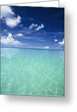 Waters Off The West Coast Greeting Card