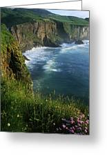 Wildflowers At The Coast, County Greeting Card