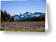Wildflowers In The Cascades Greeting Card