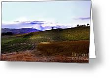 Wine Vineyard In Sicily Greeting Card